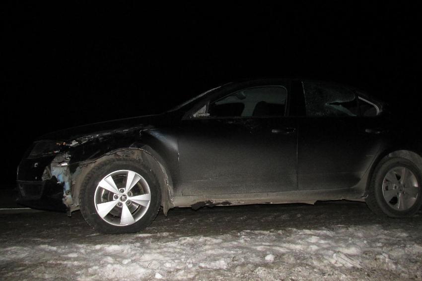 ВМарий Элзасутки вДТП погибли два пешехода