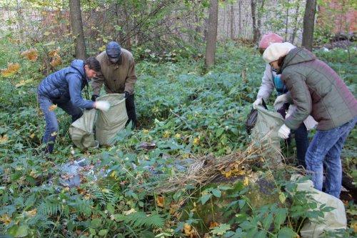 Полицейские Йошкар-Олы вышли на уборку Сосновой рощи