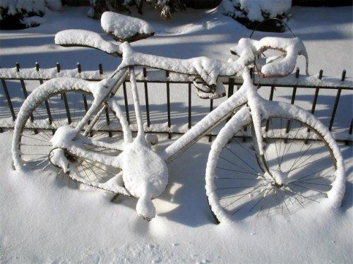 В Йошкар-Оле открылся сезон велокраж