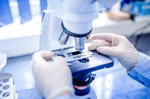 За сутки в Марий Эл зарегистрировано 43 новых случая коронавирусной инфекции