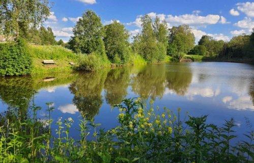 Два мальчика утонули сегодня в пруду в Куженерском районе