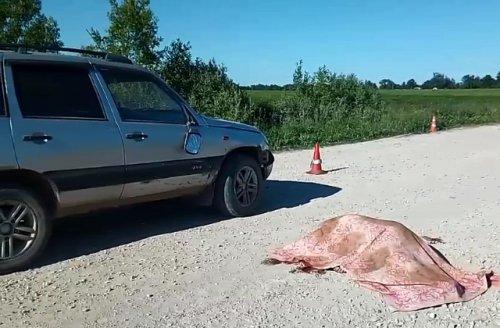 Один пенсионер на автомобиле сбил насмерть другого пенсионера на велосипеде