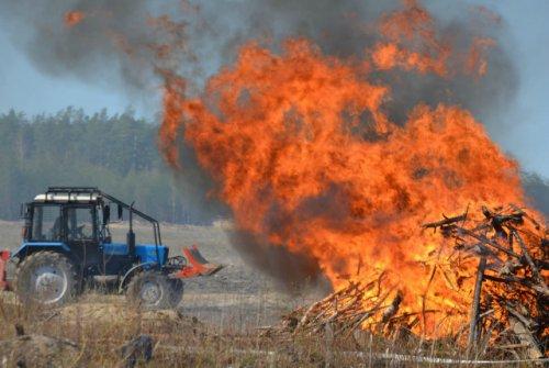 За один день на территории Марий Эл зарегистрировано три лесных пожара