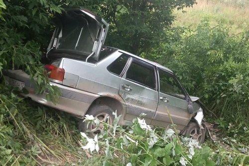 В Новом Торъяле легковой автомобиль смогло остановить только дерево