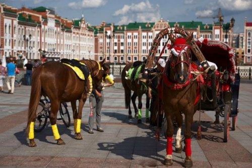 Где в городе должно быть место для катания на лошадях?