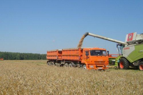 В Марий Эл продолжается уборка зерновых и зернобобовых культур