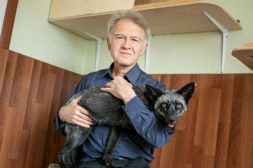 Рустам Алемжанович Фаизов: «Если я взял лису, я за неё и в ответе»