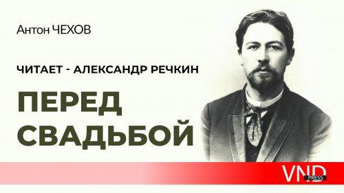 Антон Чехов «Перед свадьбой»//Читает Александр Речкин//#VNDPRESS