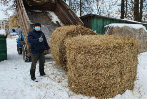 Общественники передали Медведевскому мини-зоопарку более одной тонны сена