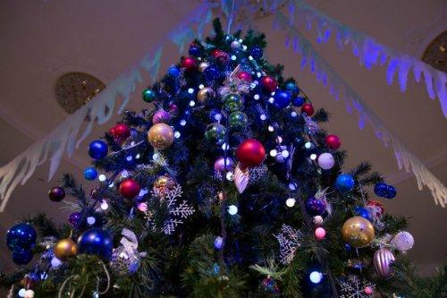 Марийское отделение ЛДПР предложило сделать выходным 31 декабря