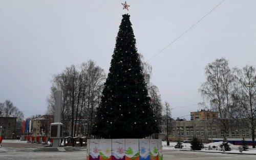 Новогодняя ёлка высотой 15 метров появилась в Парке Победы Йошкар-Олы