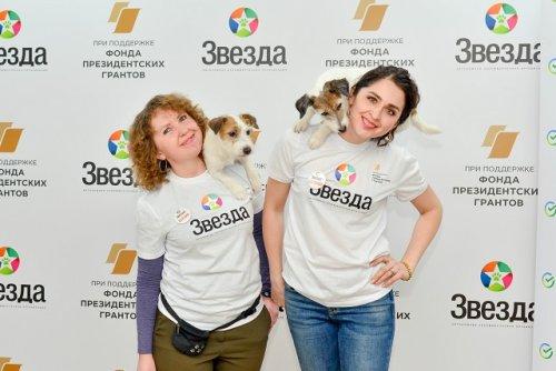 В Йошкар-Оле заявил о себе «Звёздный друг» и стартовала Школа собачьего языка