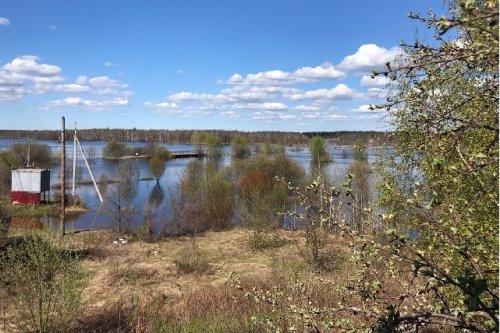 Уровень воды в районе села Кокшайск по-прежнему остаётся высоким из-за дождевого паводка