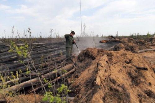 Лесной пожар у озера Карась в Марий Эл тушили в течение трёх дней