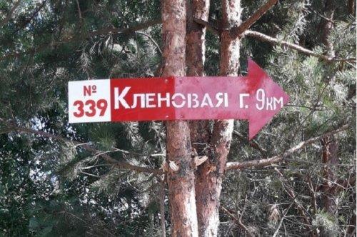 «Стрелки», установленные на территории Марий Эл, помогут людям, заблудившимся в лесу