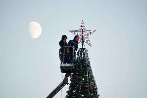 Новая новогодняя ель обошлась городскому бюджету почти в три миллиона рублей