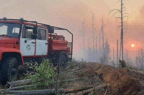 Предварительной причиной лесного пожара около посёлка Сосновый бор стала гроза