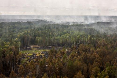 Лесной пожар в Марий Эл. День седьмой