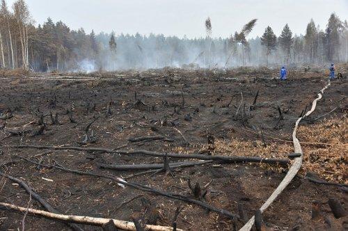 Специалисты продолжают тушить торфяники в лесах Республики Марий Эл