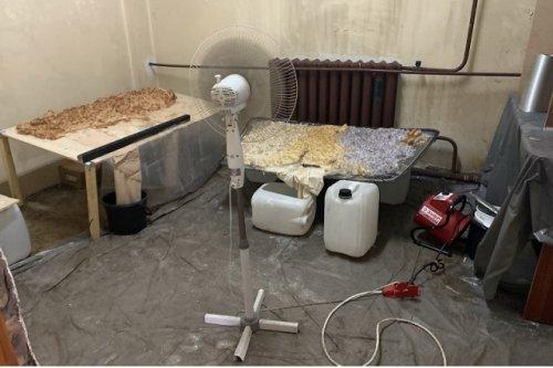 Сотрудники полиции из Республики Марий Эл пресекли деятельность нарколаборатории